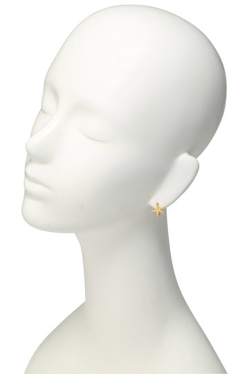 アヤミ ジュエリー/AYAMI jewelryの【受注生産】ヒトデイヤリング(ゴールド/AE-G151608)