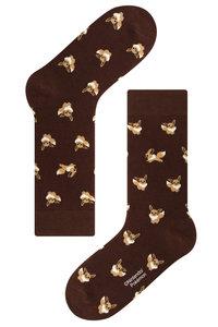 <ELLE SHOP> socks appeal ソックスアピール 【Pocket Monsters socksappeal】【ポケットモンスターソックスアピール】 Eievui-ブラウン